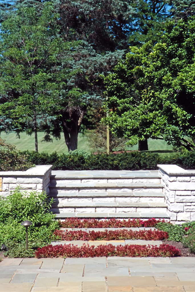 harney steps